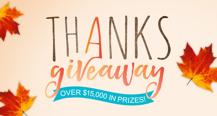 Thanksgiveaway 2017:Grand Prize Winner