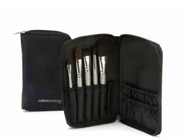 Colorescience Pro On the Go Brush Set