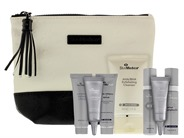 Free $160 SkinMedica Holiday Bag 2019